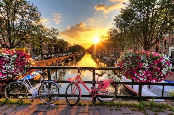 Netherlands removals