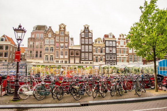 relocation to the Netherlands