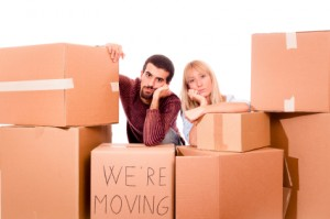 Removals to Amadora