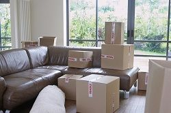 n11 home relocation in bounds green