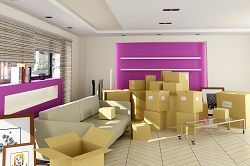 n12 furniture removals in north finchley