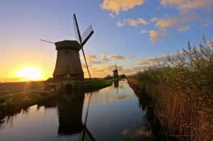 international removals to Netherlands