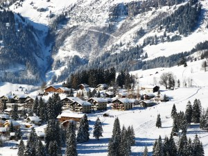 Removals to St. Gallen